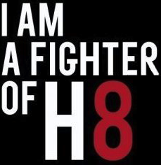 H8-fighter